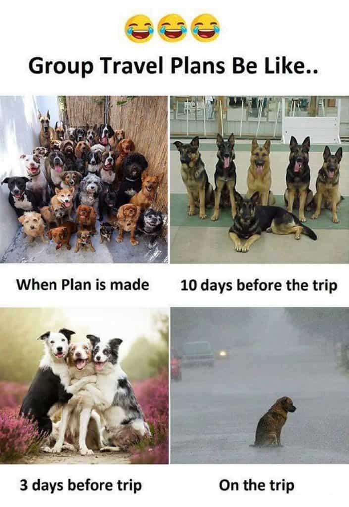 group travel meme