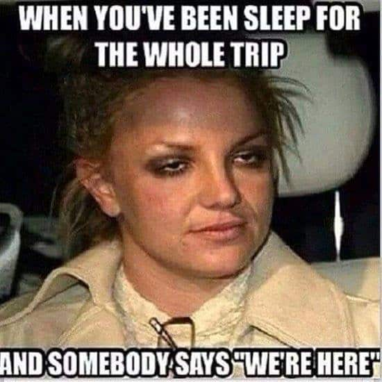 101 Hilarious Travel And Vacation Memes For Every Kind Of Traveler History Fangirl