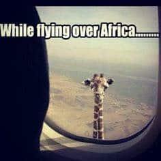 Africa Travel Meme