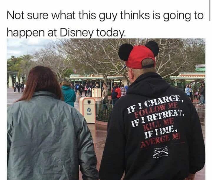 Disney World Travel Meme