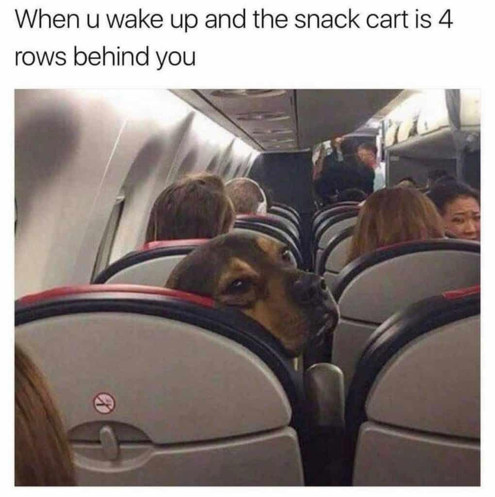 Airplane Travel Meme
