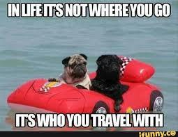 travel buddy meme