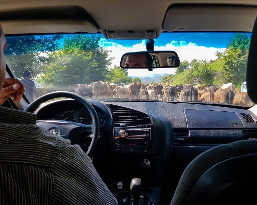 Azerbaijan - Ganja - Taxi to Lake Goygol
