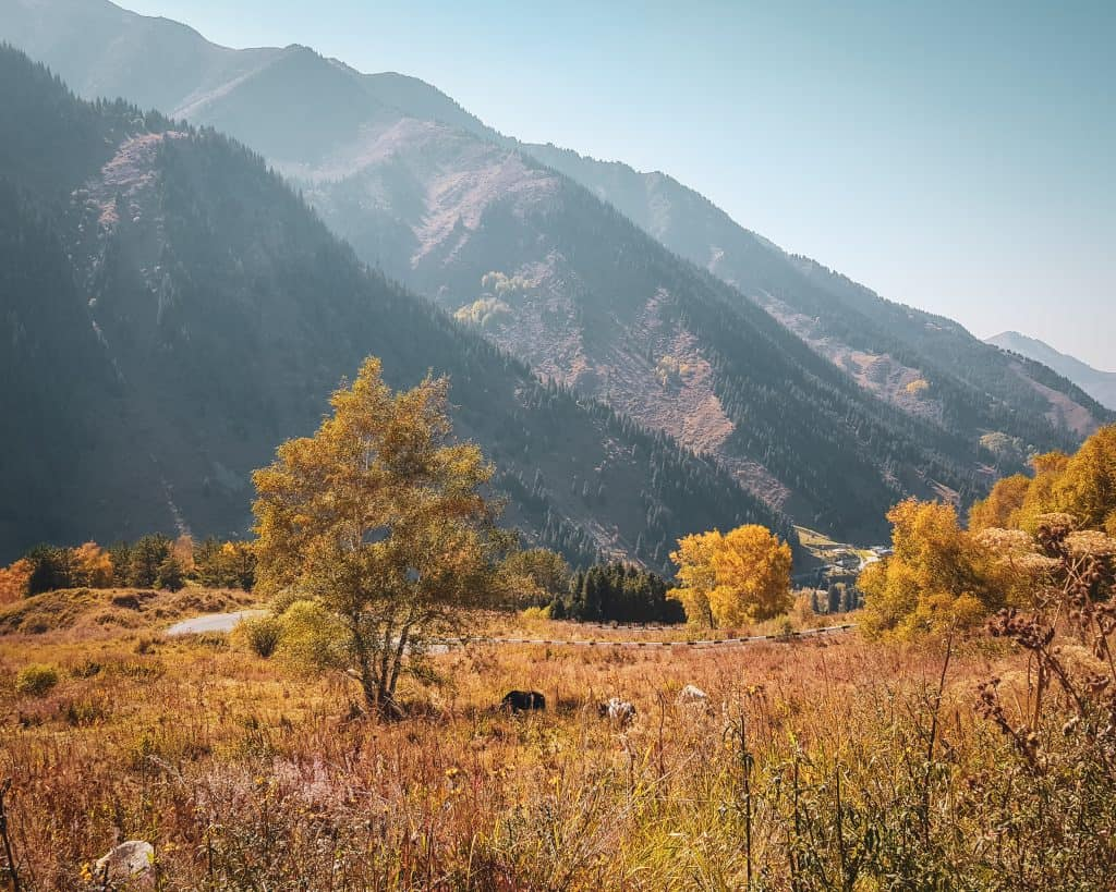 If you squint, you can see two horses enjoying the fall sunshine on the way to and from Big Almaty Lake.