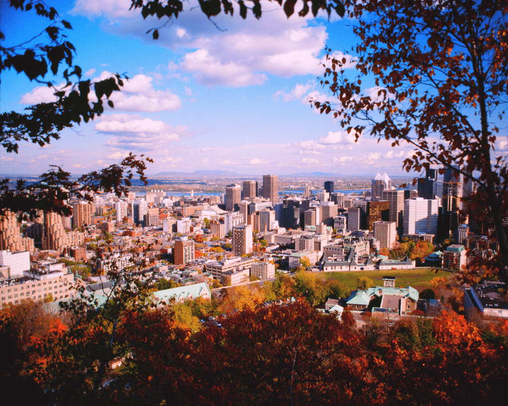 Canada - Montreal - Skyline from Mont Royal - Canva