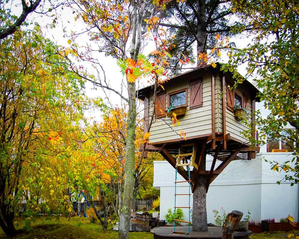 Iceland - Reykjavik - Tree House