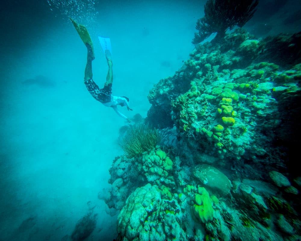 Belize - Snorkeling