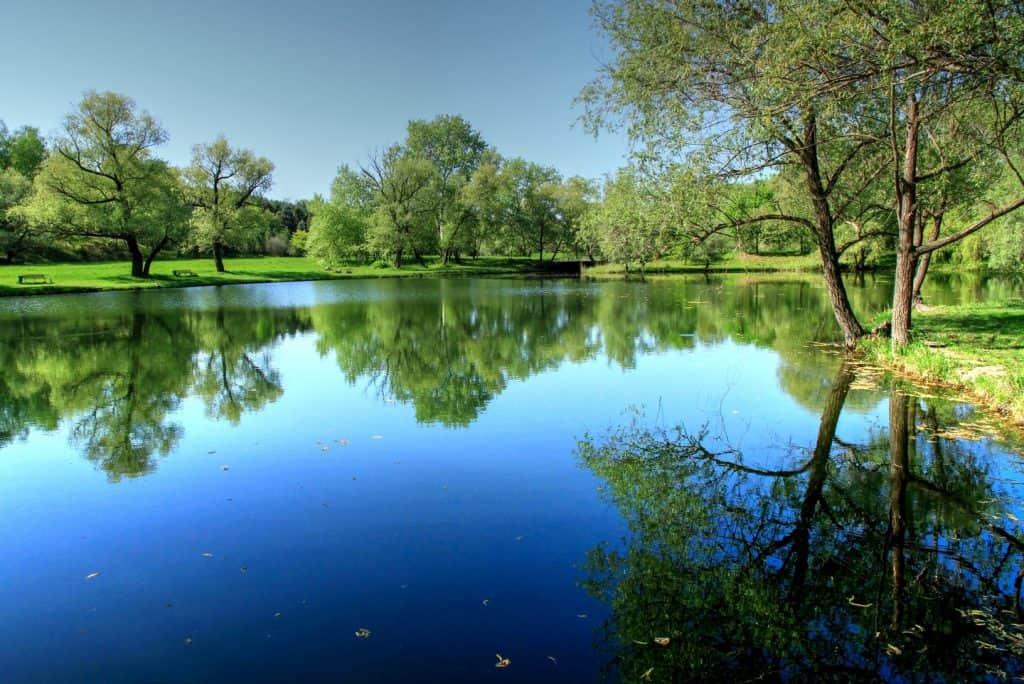 Moldova - Chisinau - Botanical Gardens - Wikimedia Commons