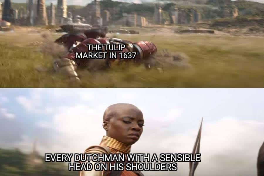 Dutch Tulip Crisis Memes