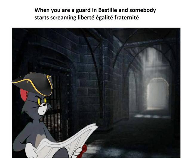 French Revolution Memes