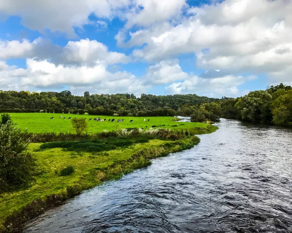 Ireland - County Meath - Boyne River Views