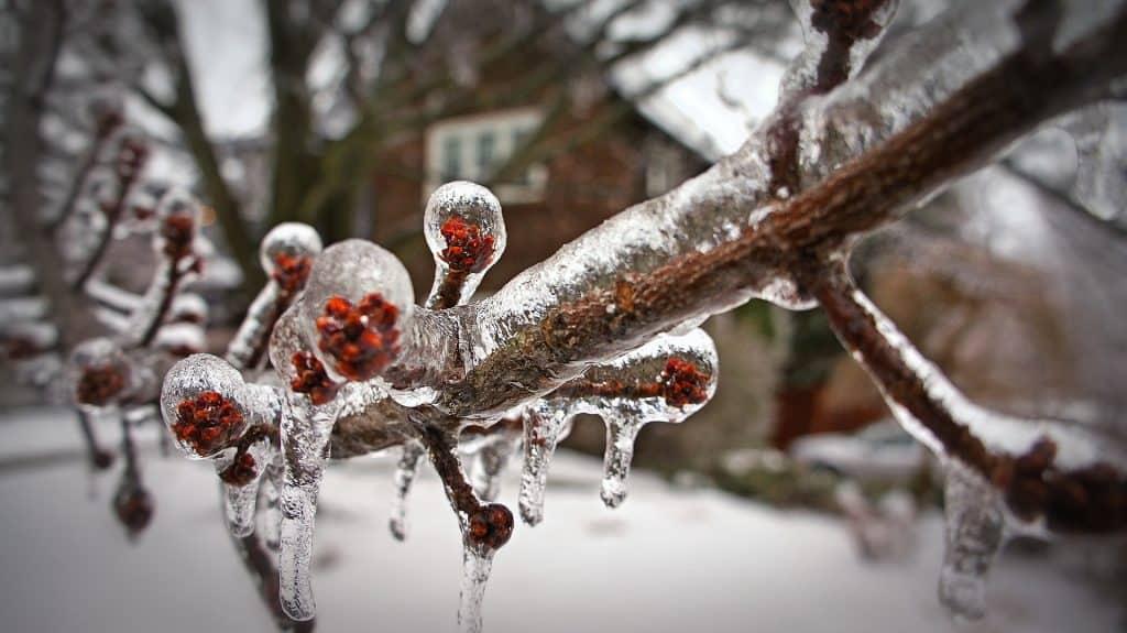 Canada - Toronto - Snow - Pixabay