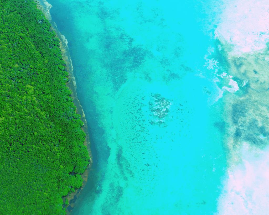 Belize - Beach - Aerial Shot
