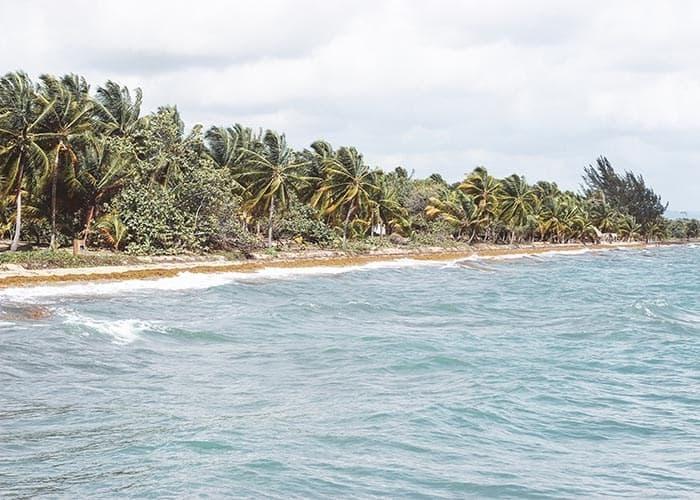 Belize - Hopkins