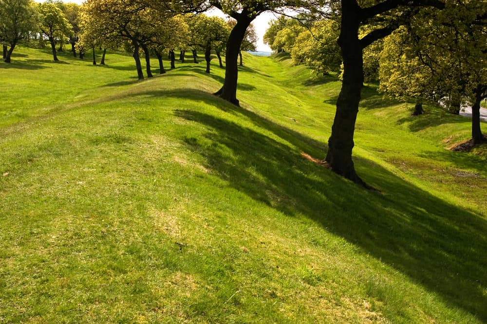 UK - Scotland - The remains of the rampart and ditch of Antonine's Wall, built across Central Scotland by the Romans as the northern boundary of their empire. - Image