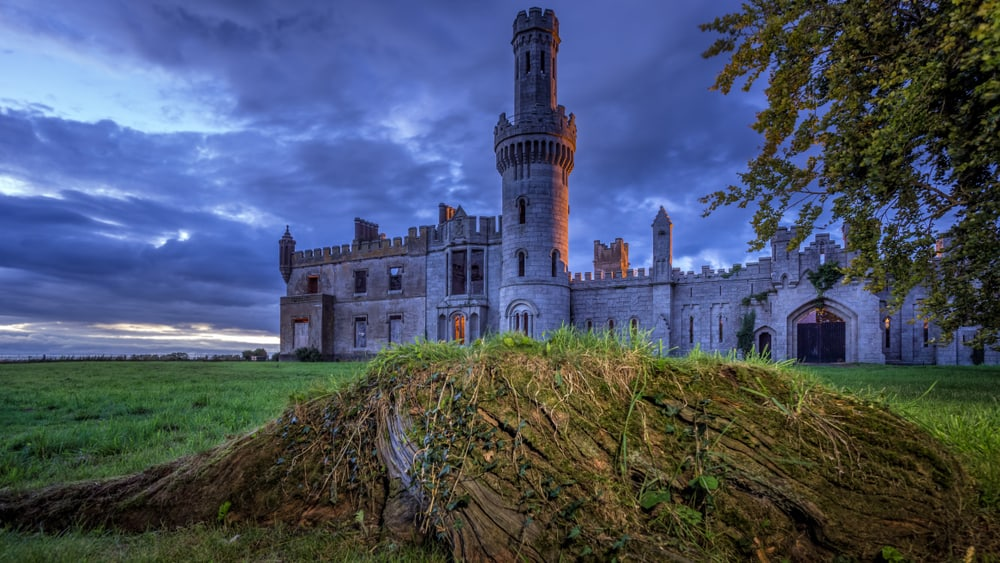 Ireland - Selective focus on old ruined 19th century Duckett Grove castle with blurry tree roots in front. Stormy sky at blue hour, Keenstown, Ireland
