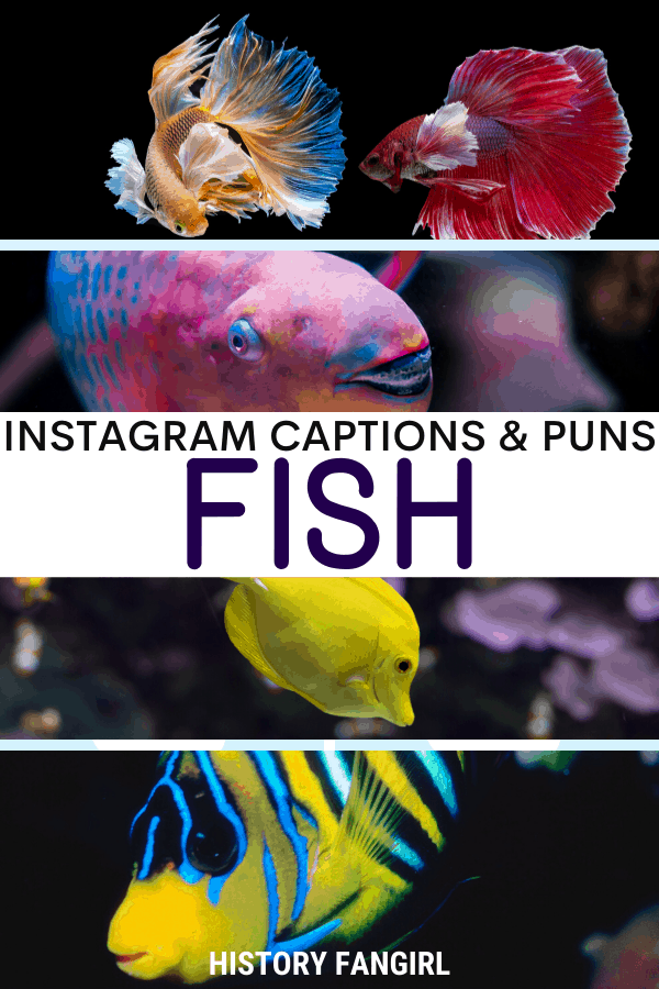 Jokes about Fish Puns for Fish Instagram Captions and Fish WhatsApp Status Fishing Puns Fishing Captions Fishing Status