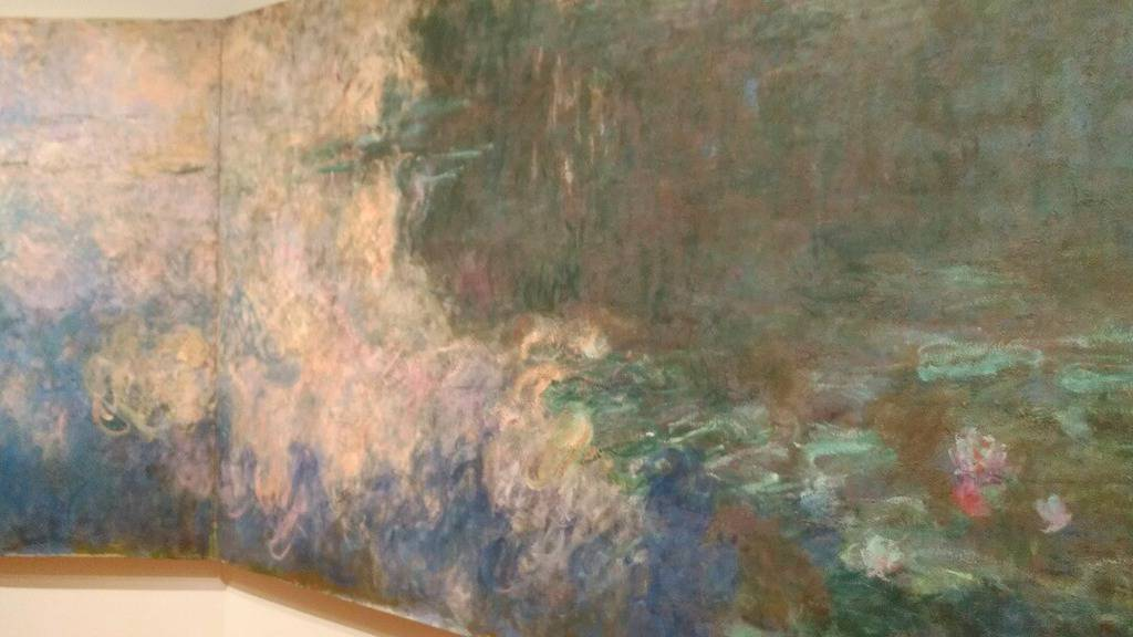 MoMA Water Lilies - Darcy VIerow Art Museums in the USA Collab