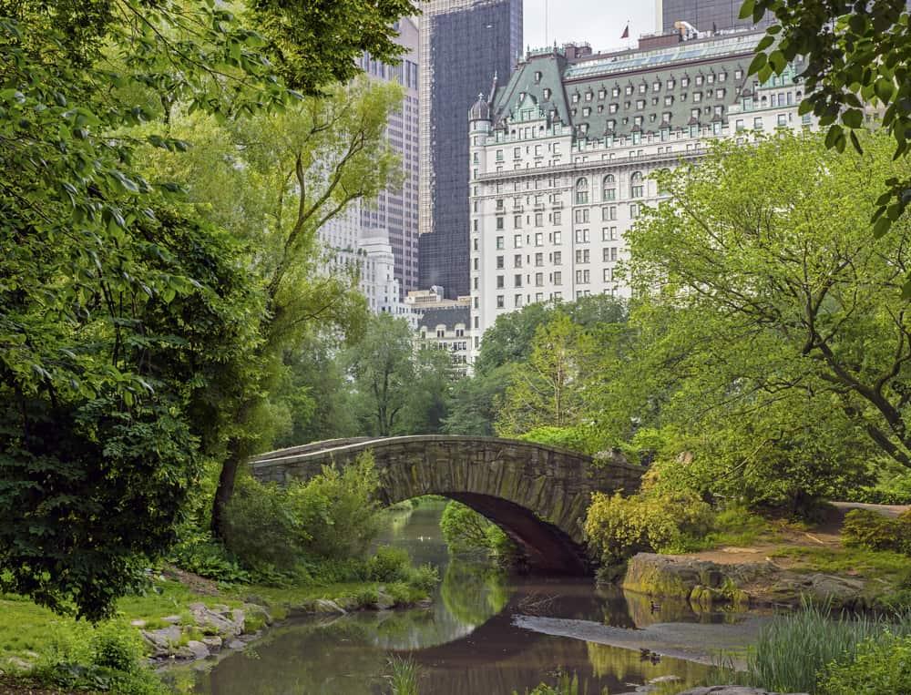 USA - New York - Central Park, New York City Gapstow bridge spring