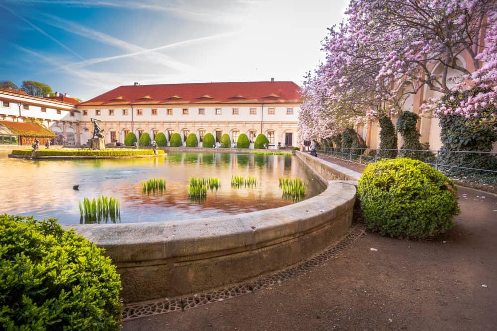Valdstejn garden in Prague with small pond and magnolia tree