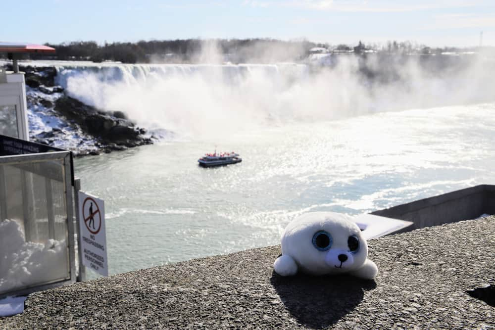USA - Canada - Plus Seal Toy in Front of Niagara Falls Souvenirs for Kids