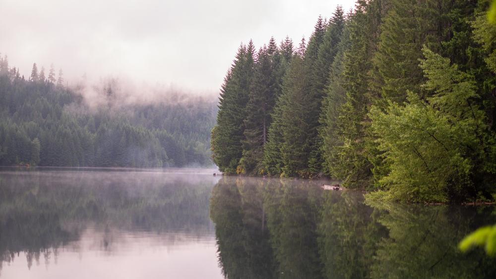 Misty Cougar reservoir landscape, in Oregon, Usa. Outside of Terwillemette hot springs