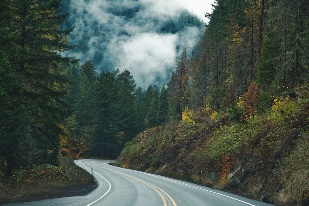 Photo of the roads of oregon in the Willamette National Forest