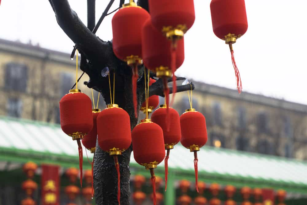 Chinese New Year in Milan. Small red lanterns on tree branches on a rainy day. Selective focus