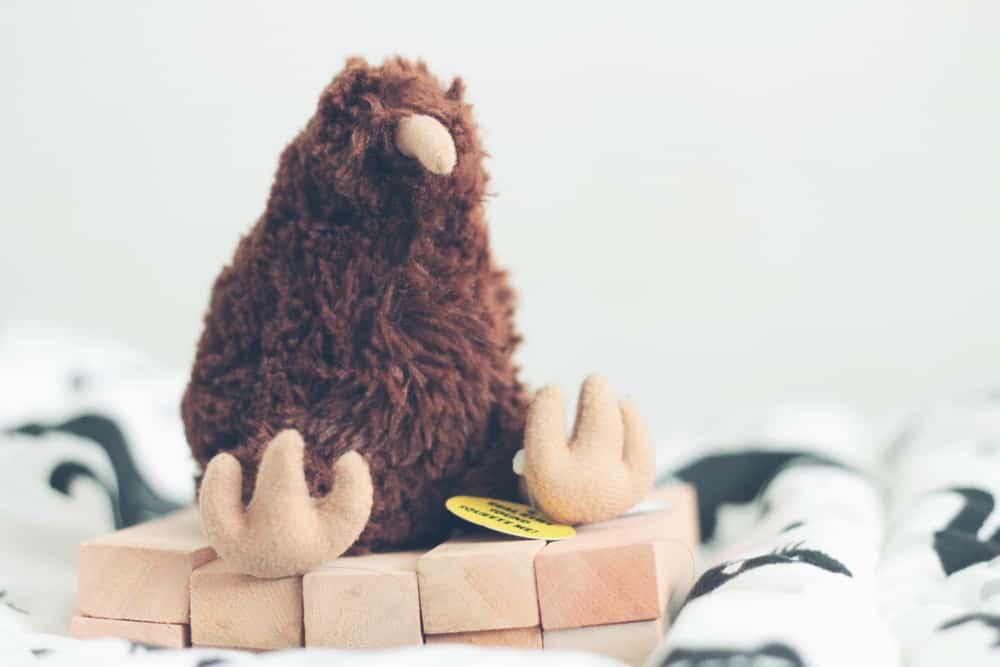 its a kiwi doll New Zealand gifts