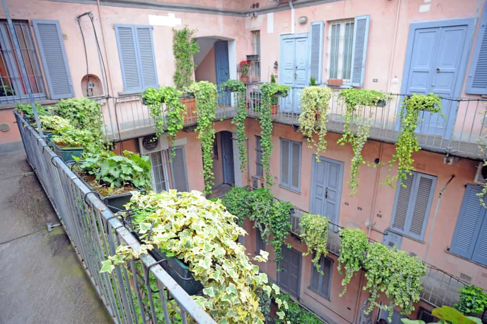 Italy - Milan - Vintage house with pink common balconies typical of old Milan - ivy plants
