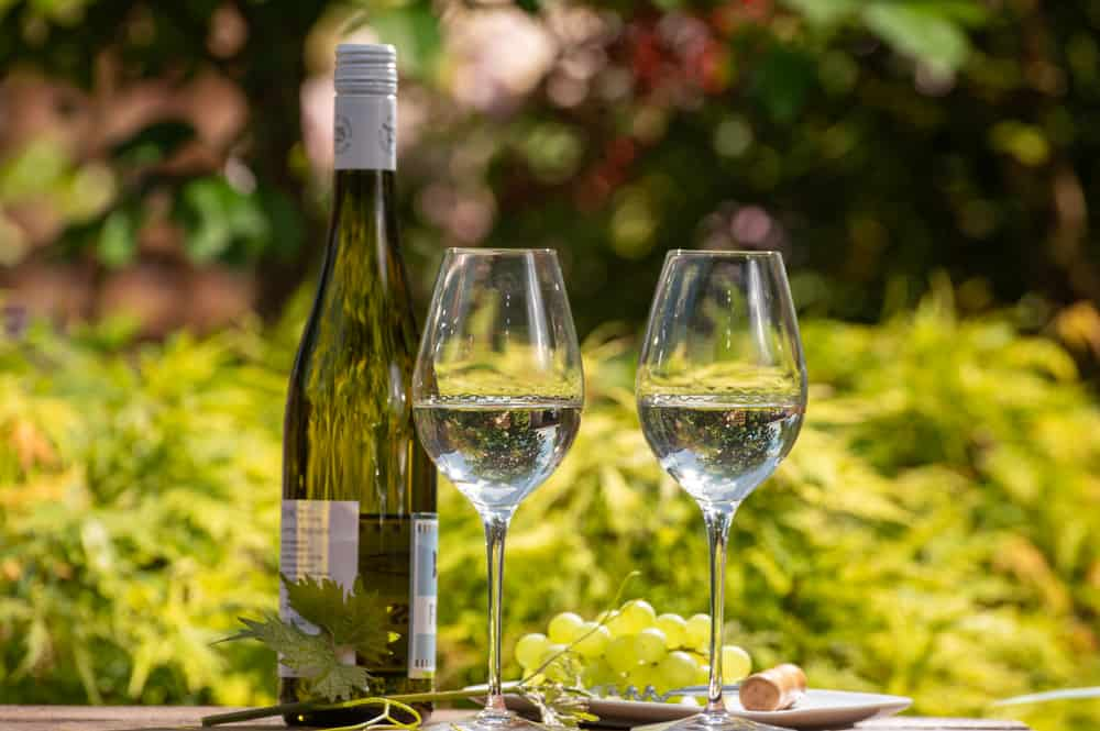 Quality wine tasting on winery in Mosel wine redion in Germany, two glasses and one bottle of riesling white wine served outdoor in garden in sunny day