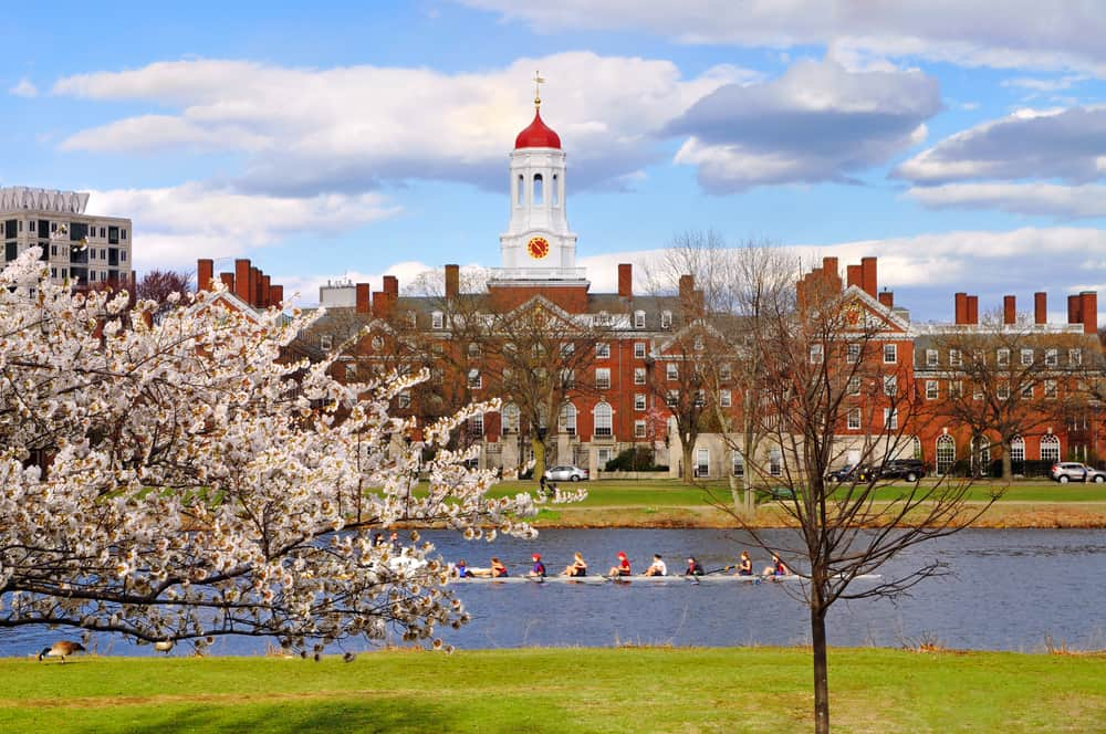 Harvard in the spring