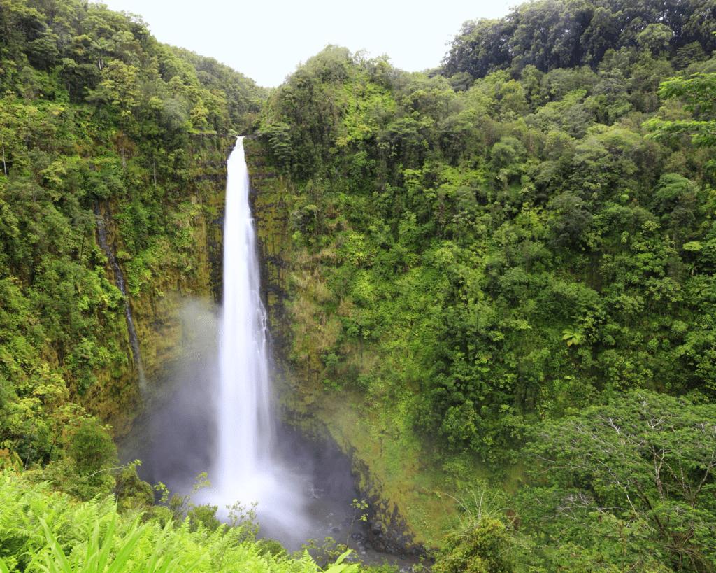 USA - Akaka Falls (Hawaii)