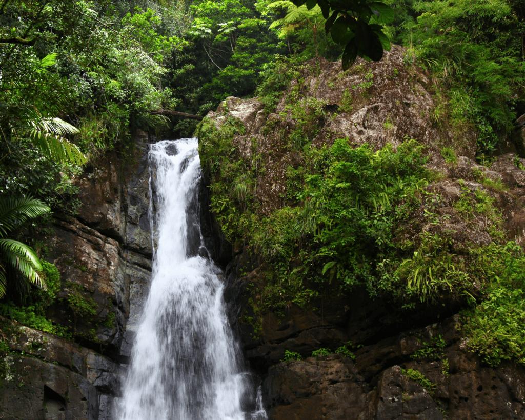 USA - Cascada La Mina (Puerto Rico)