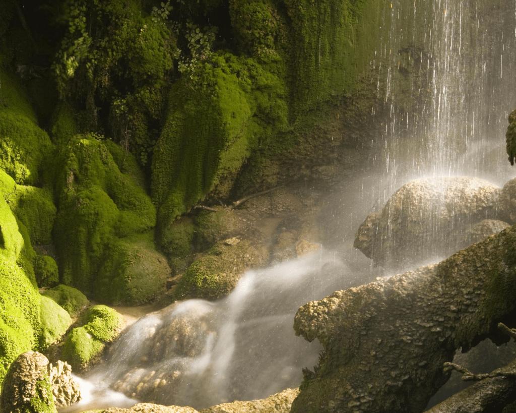 USA - Gorman Falls (Texas)