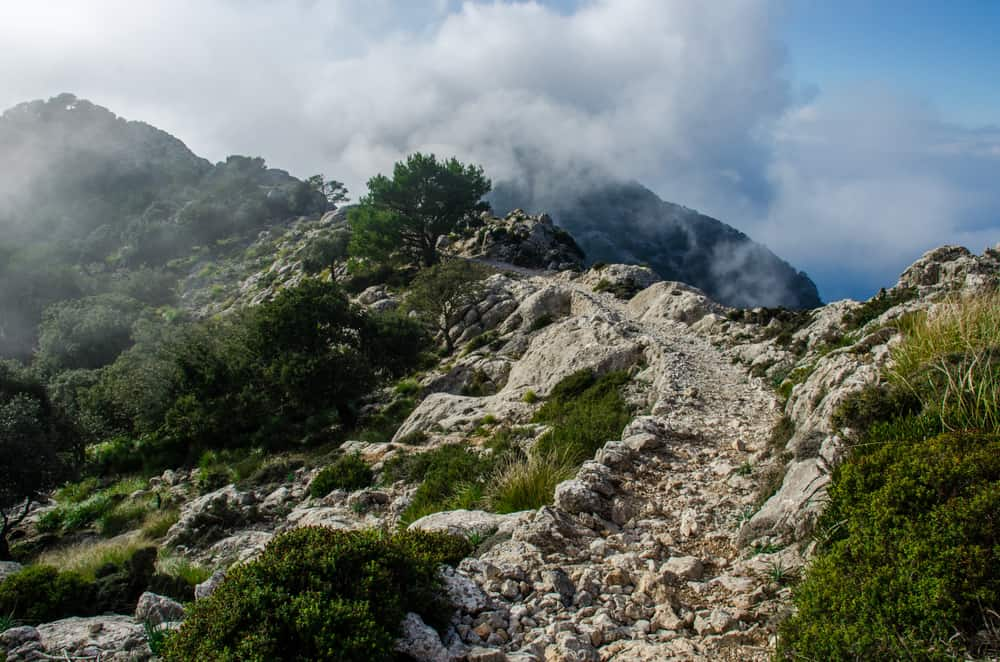 Spain - Mallorca - Trecking trail in the mountains of the Mallorca island. Winter in Spain 2018