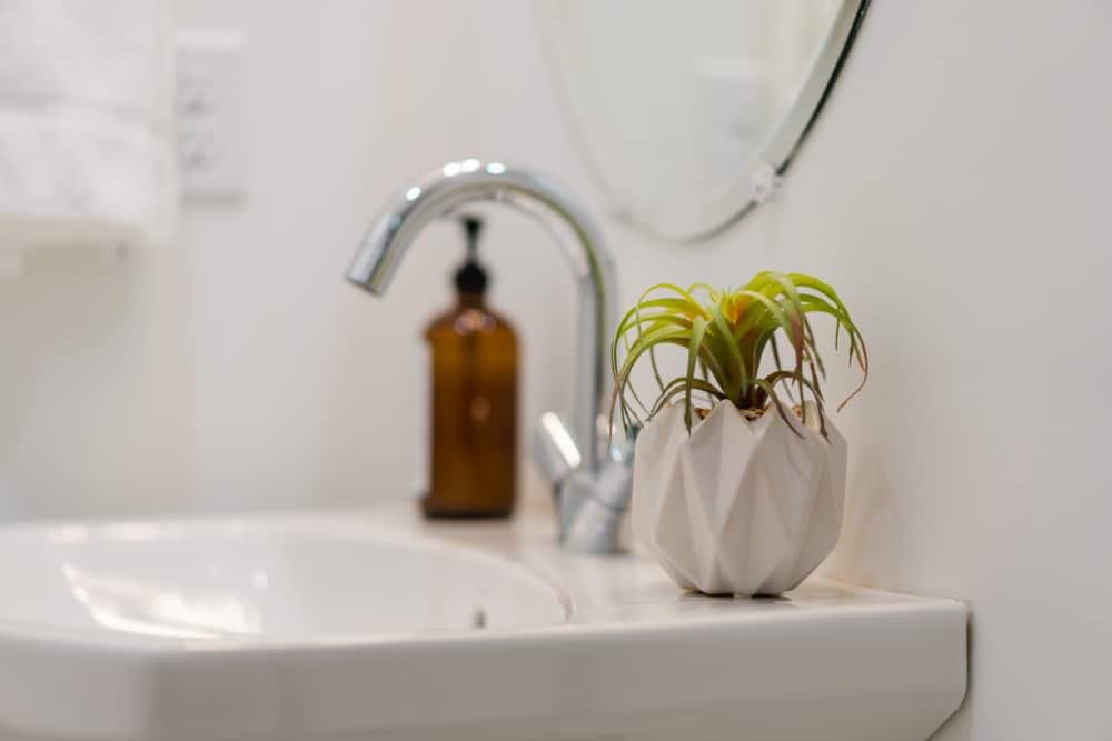 USA - Tennessee - Nashville - Plant in white vase in a clean, modern bathroom in Nashville