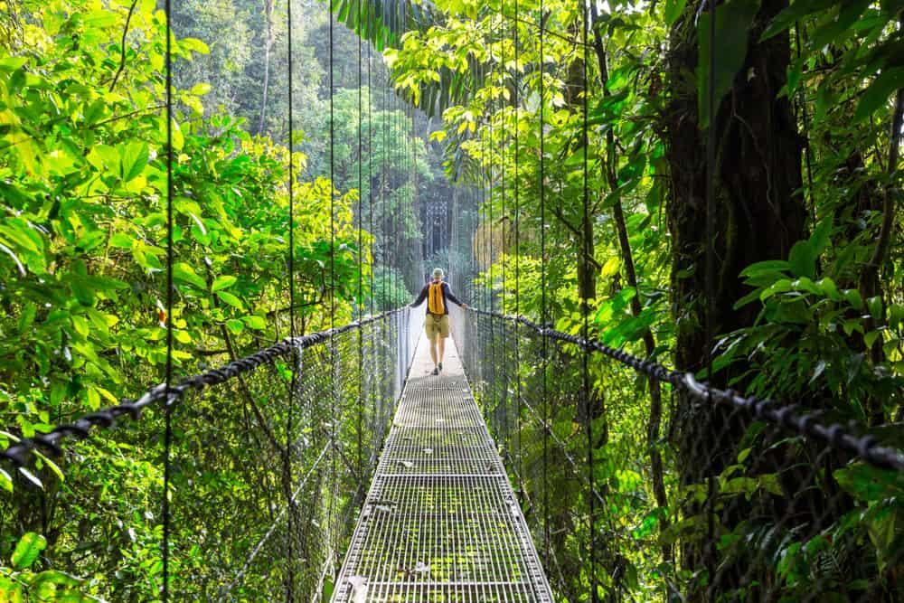 Costa Rica - Hiking in green tropical jungle, Costa Rica, Central America