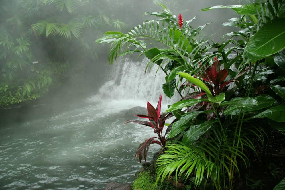 Costa Rica - Arenal Hot Springs - Costa Rica