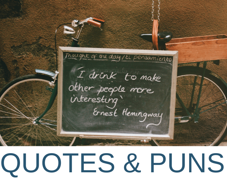 TRAVEL QUOTES PUNS AND MEMES