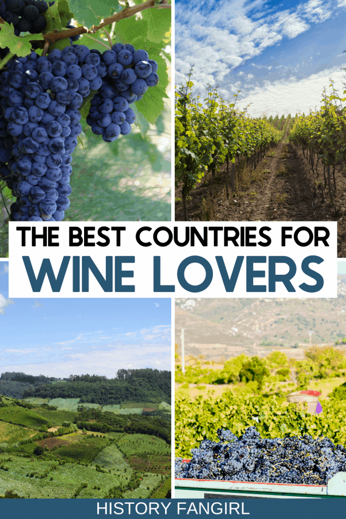 27 of the Best Wine Countries in the World for Your Bucket List!