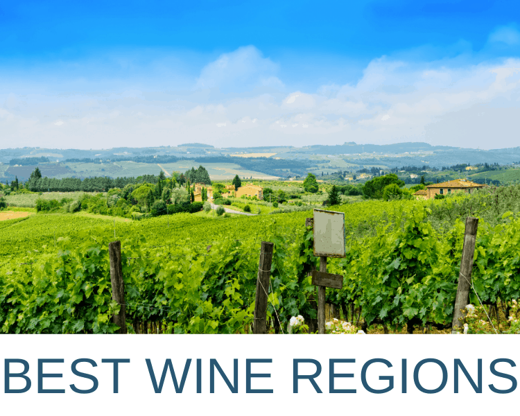 Best Wine Countries in the World