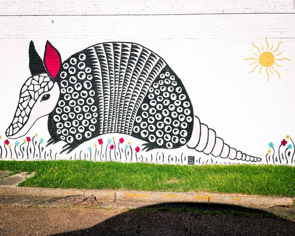 Mississippi - Jackson - Armadillo Mural - Public Art Midtown