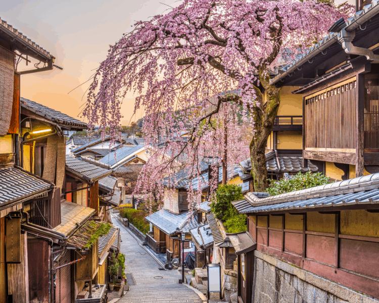 UNESCO World Heritage City of Kyoto Japan