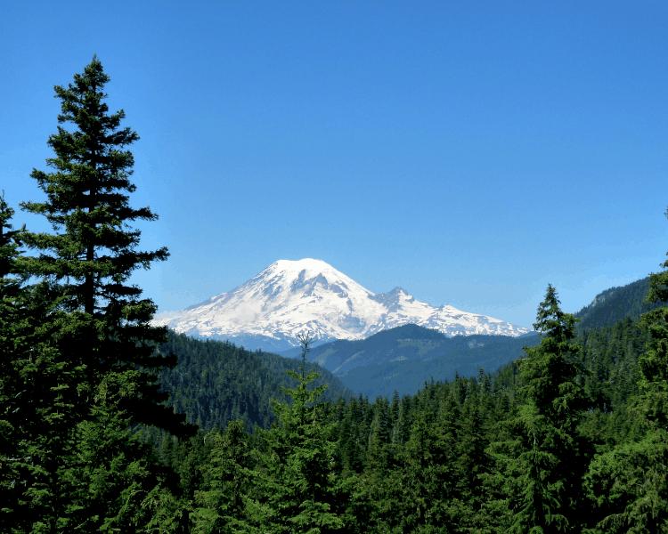 USA - Washington State - Mount Rainier